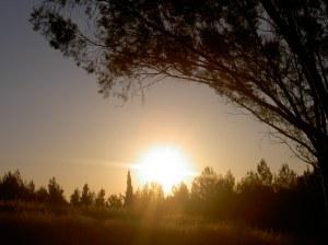 sunsetinisrael